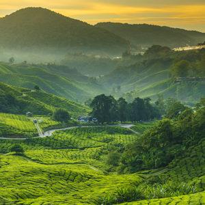 Malesia: Tour della Penisola e mare alle Perhentian