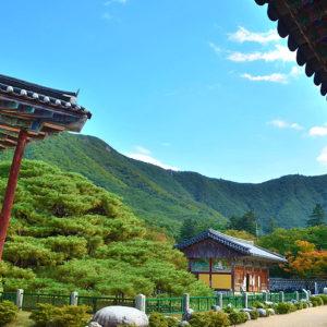 Temple stay nella provincia di Gangwon