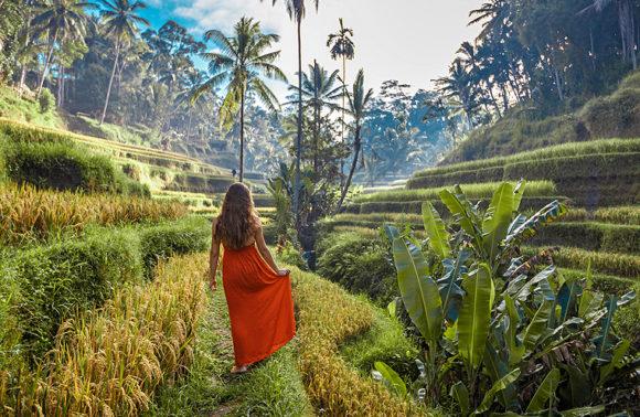 Tour di Bali con accompagnatore ad Agosto