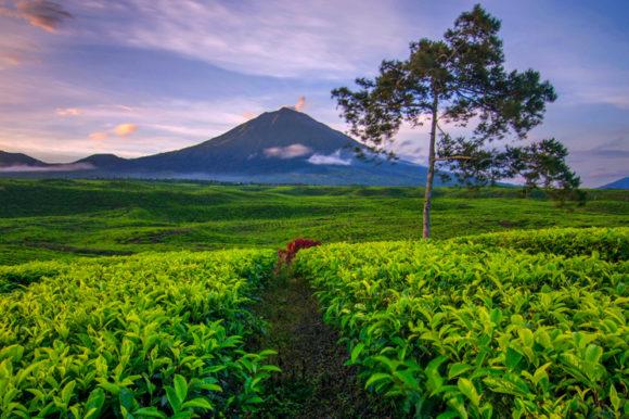 Tra i vulcani più belli dell'Indonesia