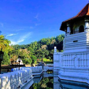 Tour introduttivo dello Sri Lanka