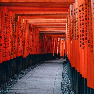 Tra i fiori d'Oriente: viaggio in Thailandia, Giappone e Malesia