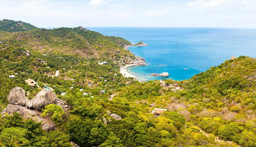 Vista panoramica con al centro una fitta vegetazione tropicale che termina sulla destra con una piccola spiaggia con scogli