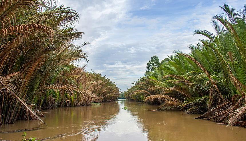Vista di un canale del Delta del Mekong