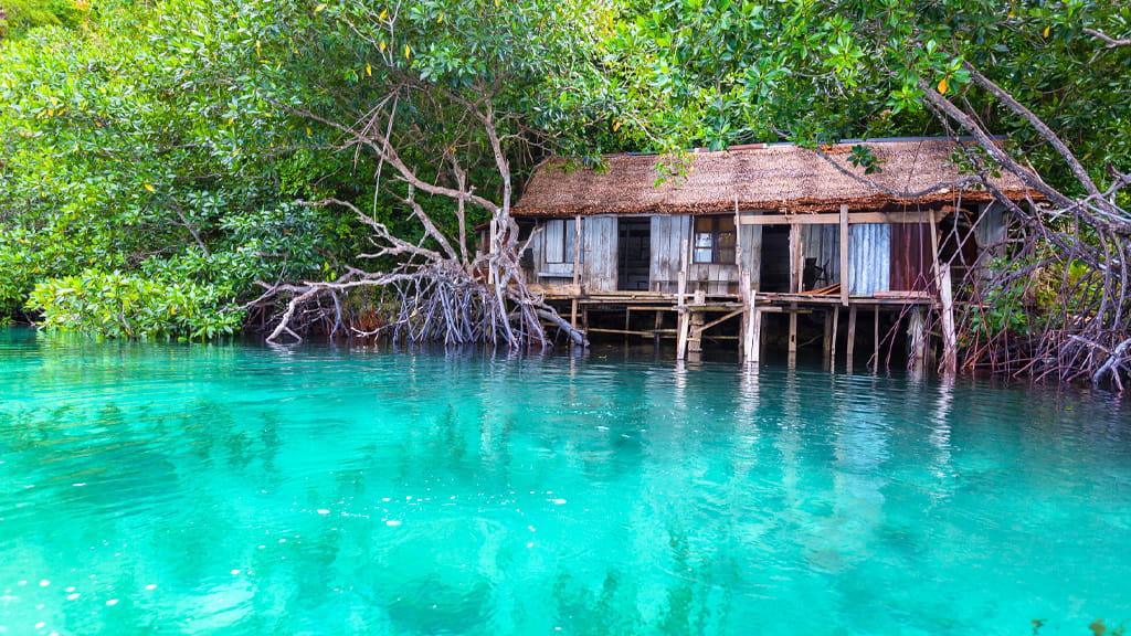 Abitazione su palafitta sulle acque turchesi del mare e circondata dalla vegetazione tropicale