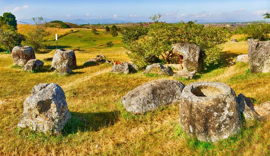 Diverse giare in pietra, aperte, disseminate in un campo erboso dai colori gialli e verdi e qualche albero.