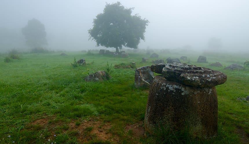 Una giara ancora con coperchio circolare in un prato verde coperto dalla nebbia da cui si vede un albero.