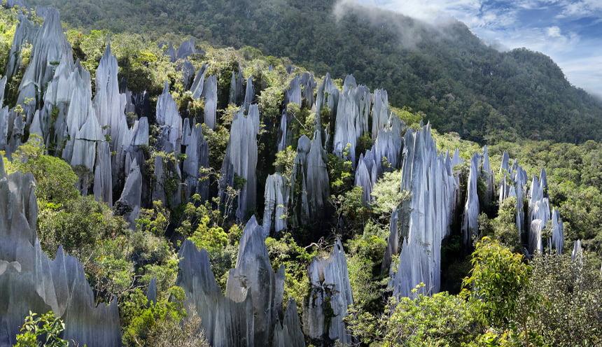 Foto con al centro delle formazioni rocciose a forma di pinnacolo circondate dal verde degli alberi della montagna.