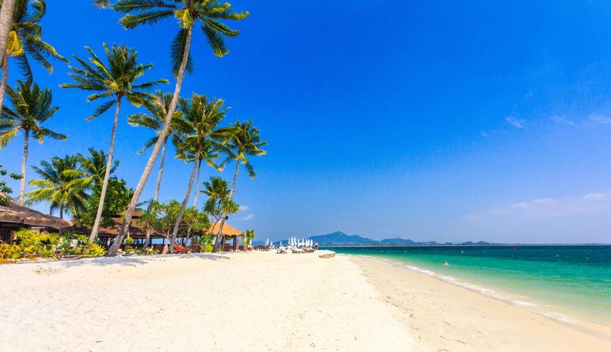 Un'ampia spiaggia con alcune alte palme.
